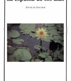 Ebooks para descargas gratuitas LA ESPUMA DE LOS