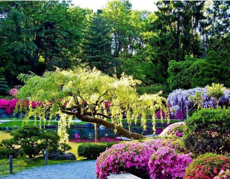 Album - Jardins secrets - Heureux celui qui a trouvé le chemin qui mène à son jardin secret
