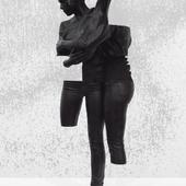 Saisir l'impossible (Andréa) - Daniel Firman