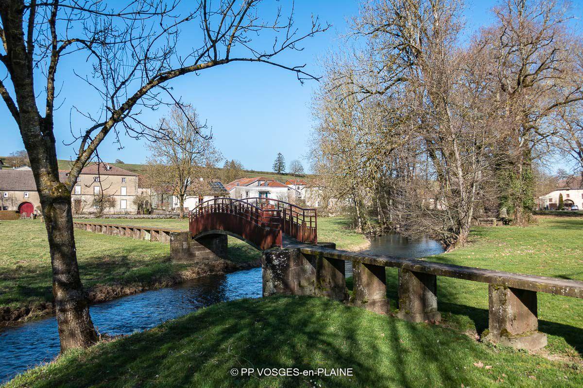 BAINVILLE-aux-SAULES et son Chêne Centenaire