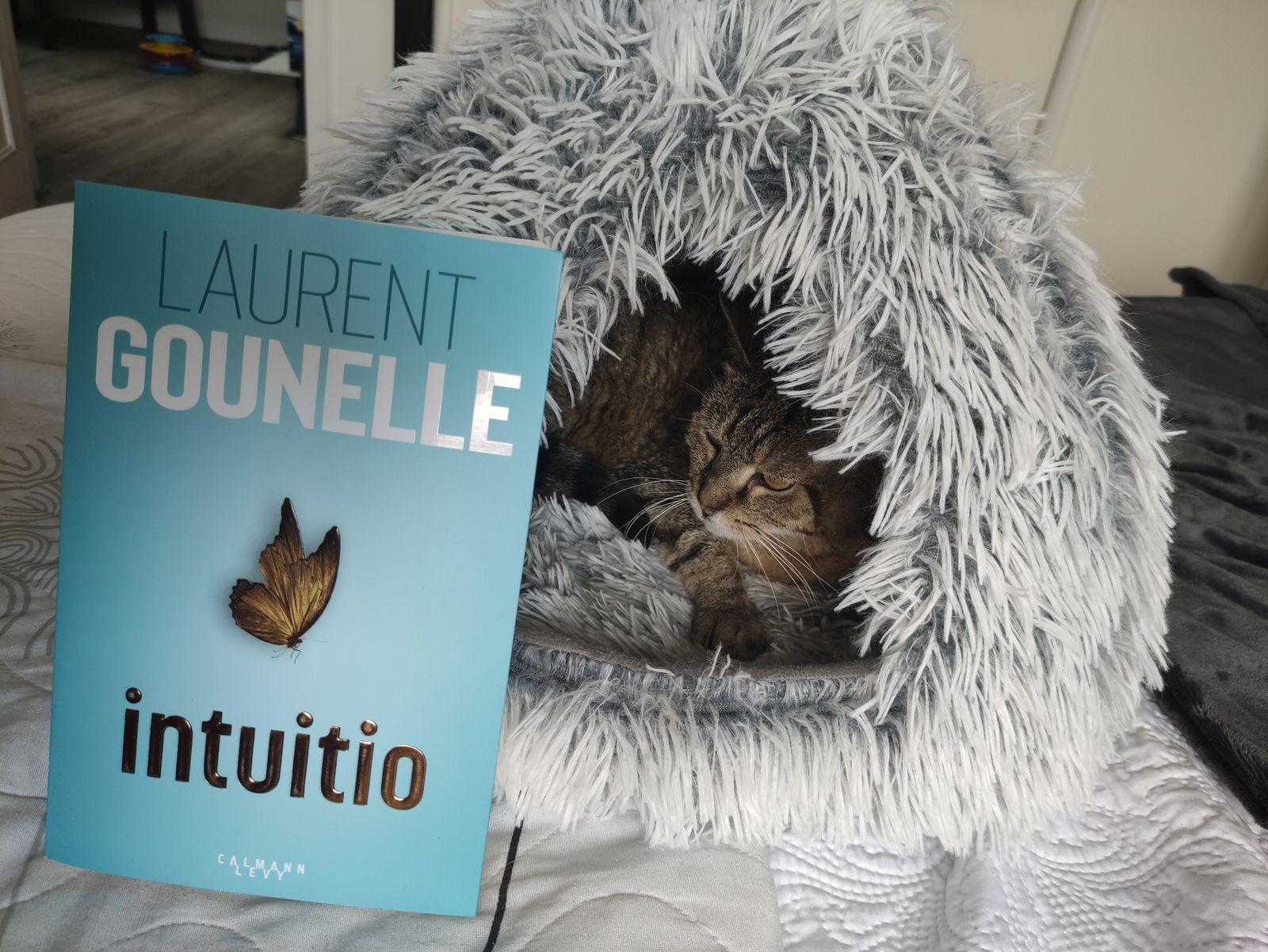 INTUITIO de Laurent Gounelle