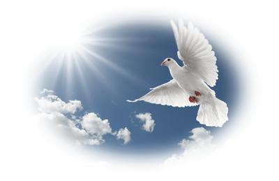 Prière universelle - 26° dimanche ordinaire ; 27 septembre 2020.