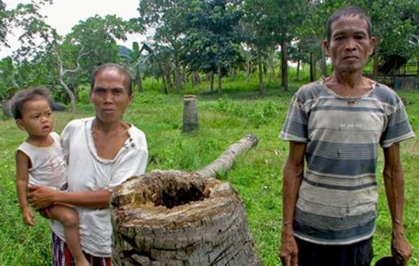 Des tribus et des agriculteurs s'unissent pour mettre fin à l'expansion de la culture du palmier à huile aux Philippines