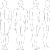 Drawing the Human Figure: Angles & Proportions