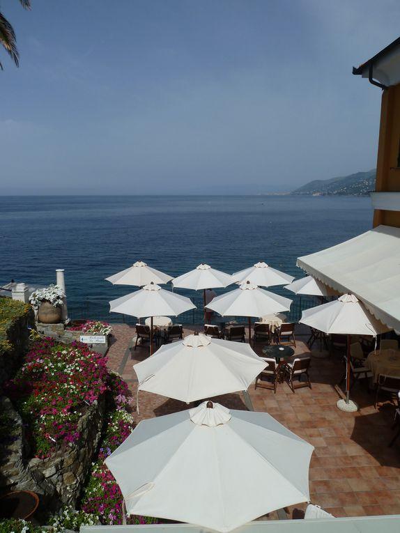 Colorée, joyeuse,élégante,festive ...c'est Camogli sur la côte Ligure à deux heures de la frontière française.Sur la route de Portofino, elle mérite mieux qu'un stop: un vrai séjour !(reproduction photos interdite )