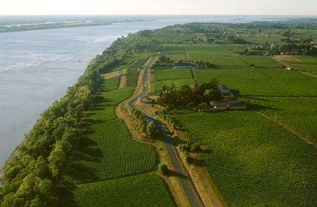 Climat : les vignobles français menacés dès 2050
