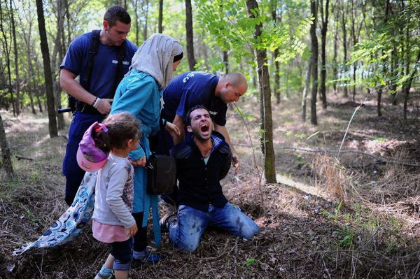 A refugee is arrested by the Hungarian police in front of his wife and daughter near the village of Roszke after crossing the Serbian border on August 28, 2015 (AFP Photo / Attila Kisbenedek)