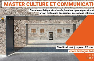 Master Culture et Communication de l'Institut national supérieur de l'Éducation artistique