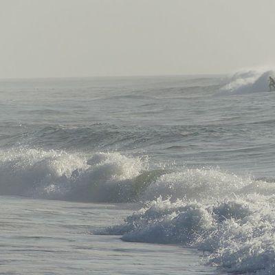 Des images de la côte landaise