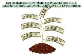 La nature aux mains des semenciers industriels, isolé un gène suffit à se l'approprier par brevet, le vol de la vie !