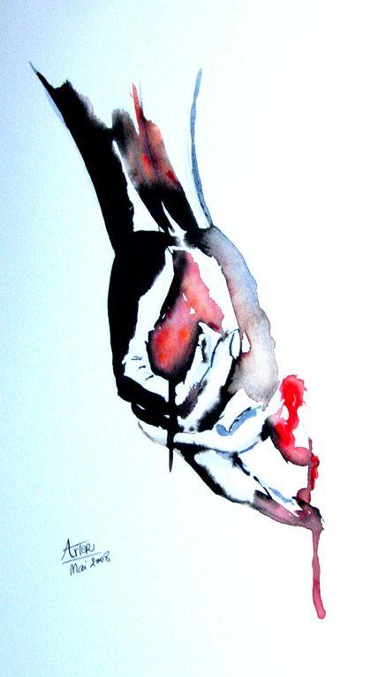 Album - Galerie 2008