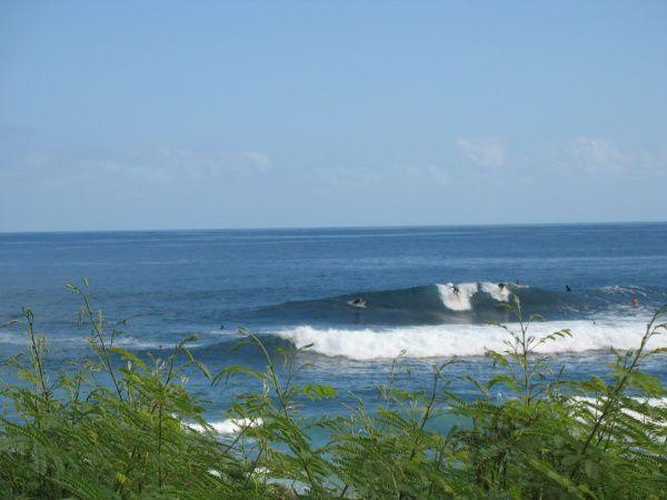Album - 2010-surf_Reunion