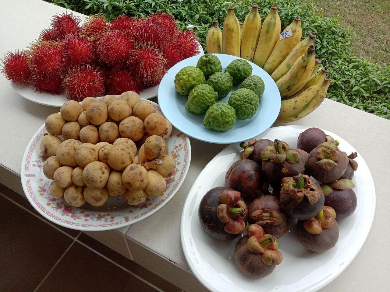 Fruits de saison (21-14) – Saison des fruits…
