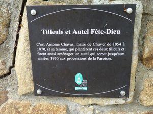 Tilleuls jumeaux de Chuyer et La Chapelle Villars
