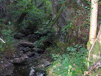 Randonnée dans les Gorges d'Enval (Puy-de-Dôme)