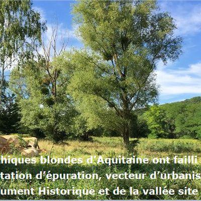 Jugement du Tribunal administratif de Versailles, notifié le 4 mai, contre le zonage de l'assainissement et  la station d'épuration de Saint-Lambert-des-Bois