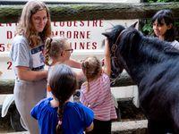 Equitation Comines - 16/20-07-2018
