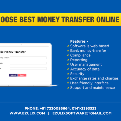 How to Choose Best Online Money Transfer Software in India