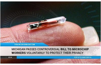 "USA : le Michigan vote un loi permettant l'implant de micropuces RFID ""au nom du respect de la vie privée"""