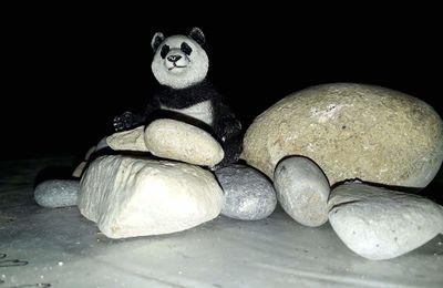 Panda de jour / Panda de nuit