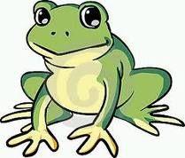 simbologia della rana