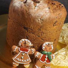** Delicieux Panettone de Noel sans beurre ni oeufs.  IG bas ou pas** pétrissage en MAP,cuisson au four**)