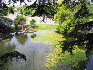 Un circuit autour des lacs et rivières du Bois de Boulogne