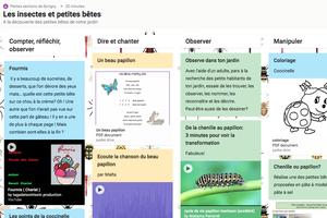 Padlets insectes (PS) et jardin (MS) chez Nanou, Amélie et Nicolas