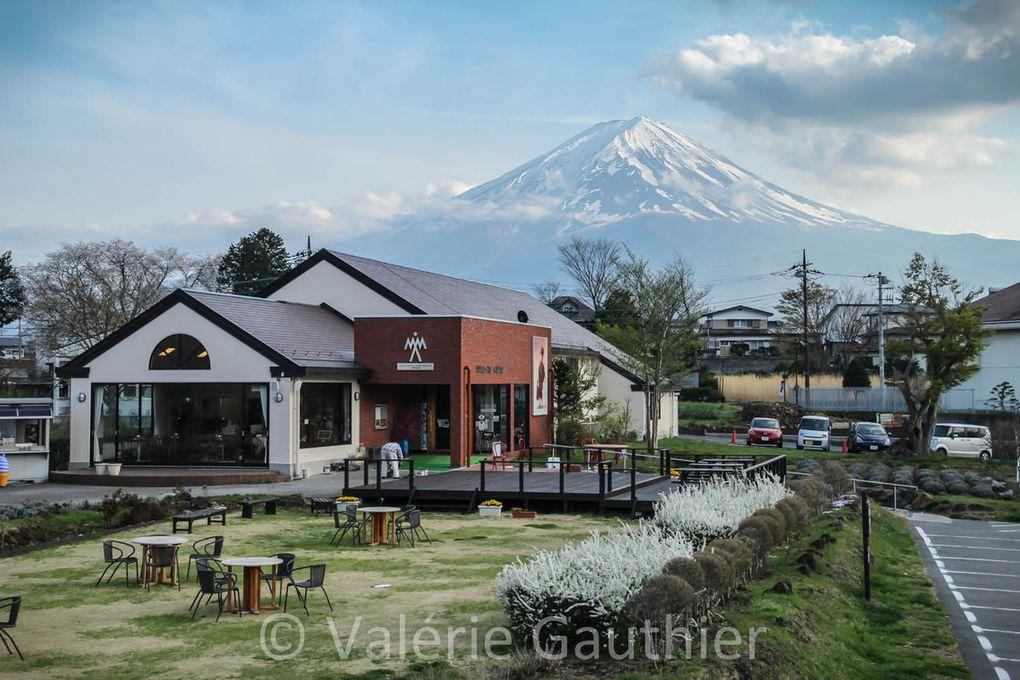 Kawaguchiko et le Mont Fuji