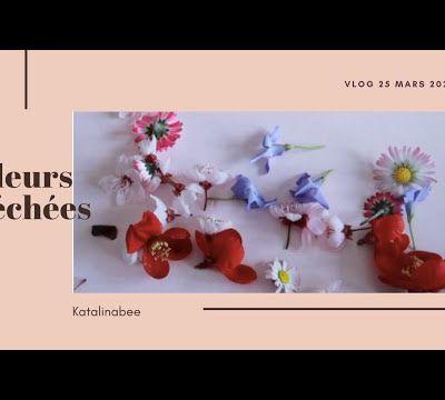 Vlog 25 mars 2021 - Fleurs séchées