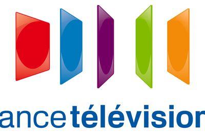 Les Championnats d'Europe de natation 2016 à suivre sur France Télévisions