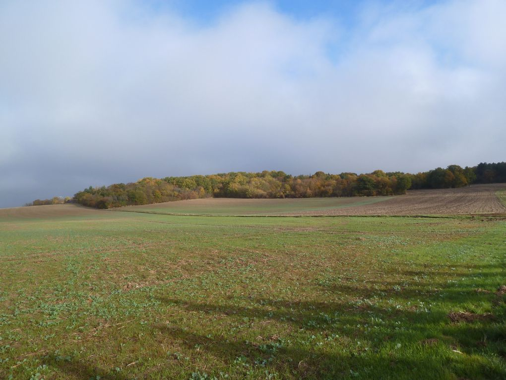 Randonnée en boucle autour de Garancières-la-Queue, 20,4 km.