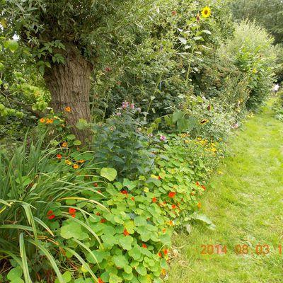 Au jardin d'Aalbeke - Vidéos jardinage