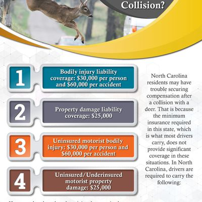 Who Covers The Costs Of A Deer Versus Vehicle Collision?