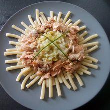 Saumon, poireaux et pâtes au cookéo