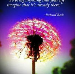 Richard Bach - English