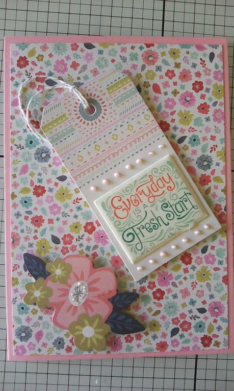 1 kit ,10 cartes :Crafty Ola Store mai 2018
