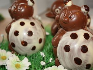 "Visite de ""la boîte à chocolat"" à Rueil-Seraincourt (95)"