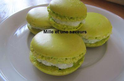 macaron basilic citron vert de C. Felder