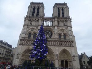 Kulturkampf : Par ce que c'est Notre-Dame ! ( à nous les Catholiques )