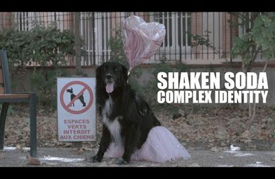 Shaken Soda EP (autoproduit)