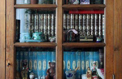 La Bibliothèque des Gens #18 : La Bibliothèque d'Anne-Marie