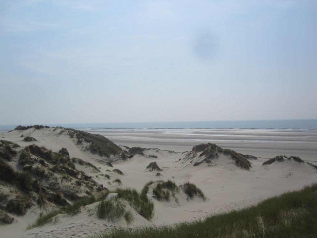 la Baie de Somme, 1er jour, l'après midi, LES CROCS
