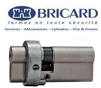 Bricard_Serial_S_Versailles
