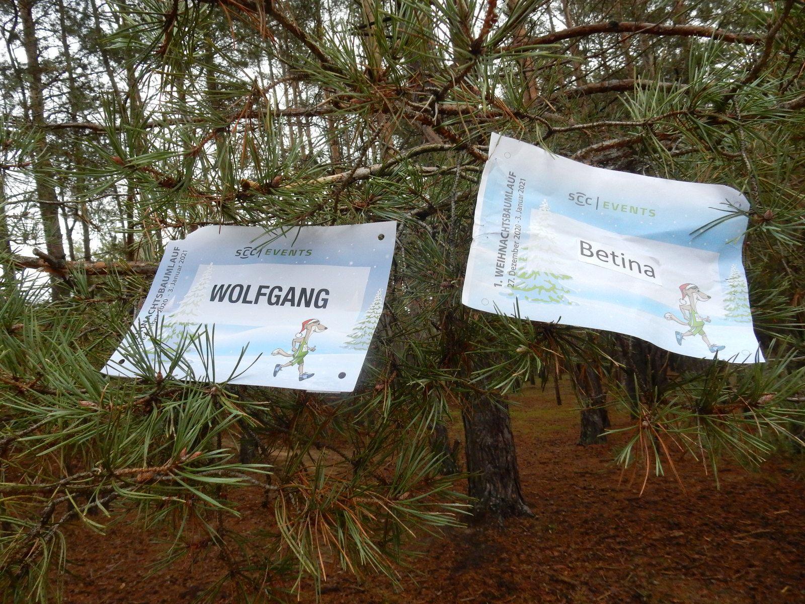 1. Weihnachtsbaumlauf des SCC in den Falkenseer Alpen am 2. Januar 2021 mit Coronaabstand