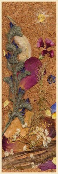Tableaux - herbiers : Compositions de fleurs pressées format marque pages, cartes postales ou posters