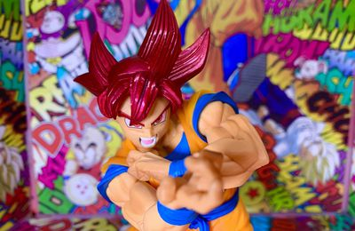 Blood of Saiyans Spécial vol.6 Son Goku God