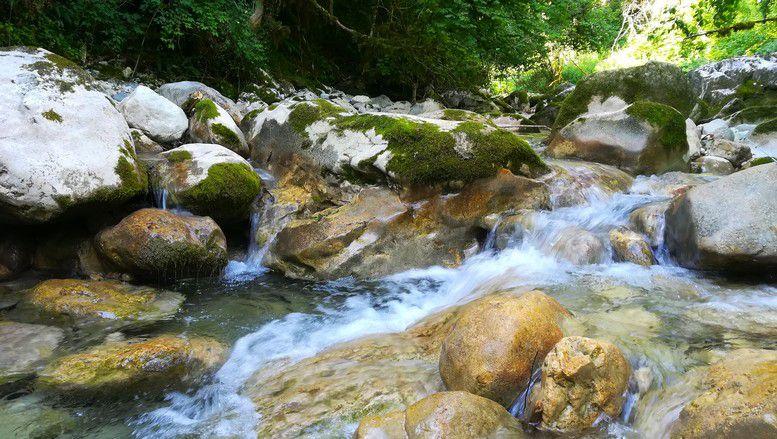 La splendide rivière.
