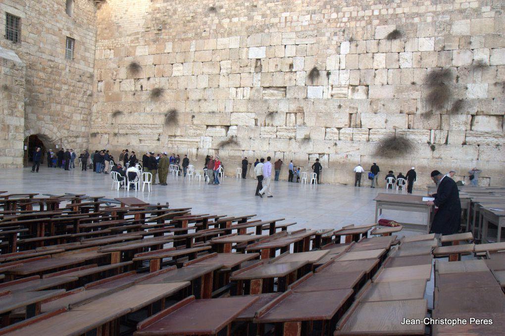 Un séjour à Jérusalem et en Cisjordanie, à la rencontre de la résistance palestinienne non violente contre l'occupation israélienne.