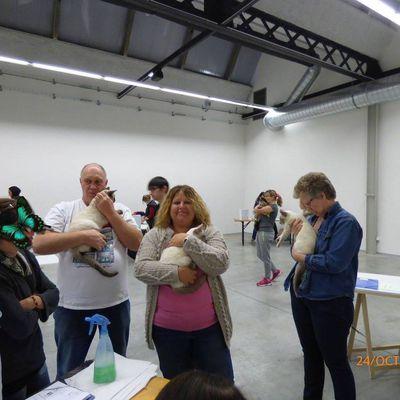 Bilan exposition 24 octobre 2015